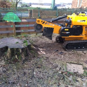 Stump Grinding & Removals